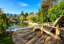 Oczko wodne w ogrodzie – co trzeba wiedzieć?
